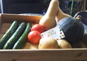 野菜工房みのり